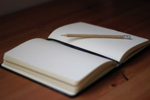 Word of the year 2019 open blank journal
